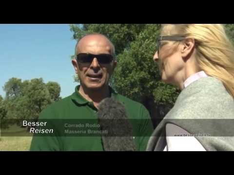ORF AUSTRIA INTERVISTA