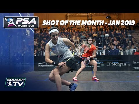 Squash: Shot of the Month - January 2019 Contenders