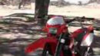 9. Dirt Bikes - 2008 Beta Motorcycles - MotorcycleUSA.com