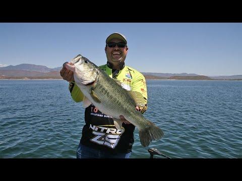 Fishing with Johnny Johnson - Roosevelt Lake, AZ – Swimbaits as Search Tool – April, 2015