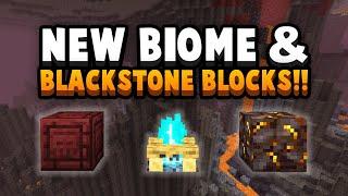 Basalt Delta Biome, Blackstone & Other HUGE Nether Update Changes