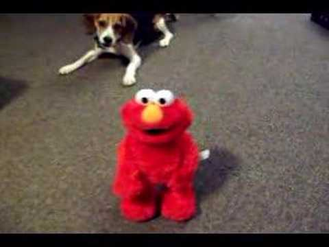 Elmo Has the Giggles