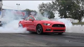 Nonton Melissa's Hellion Twin Turbo 2015 Mustang at the Track & Dyno Film Subtitle Indonesia Streaming Movie Download