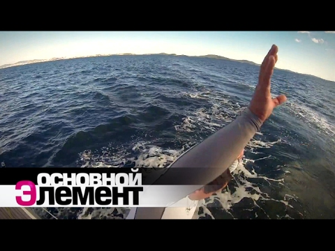 Выжить в океане | Основной элемент