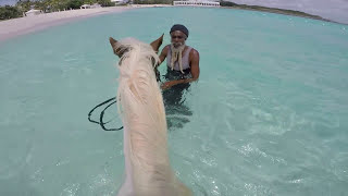 Join me as I take you on a trip to gorgeous Anguilla. For more on what to eat, see and do when on this piece of Caribbean paradise visit: ...