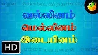 Kasada Thapara - Children Tamil Nursery Rhymes Cartoon Songs Chellame Chellam Volume 1