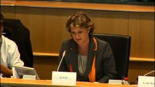 Gál Kinga a Tavares-jelentés tervezetének első vitájában (angol nyelvű videó)