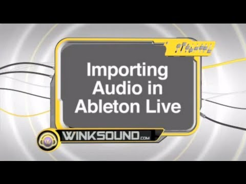 Ableton Live:  Importing Audio | WinkSound