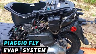 6. Piaggio Fly - How To Remove Evap System