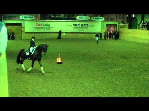 Стальные нервы лошади
