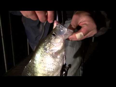 Winter crappie night fishing oow outdoors fishing fanatic for Crappie fishing at night