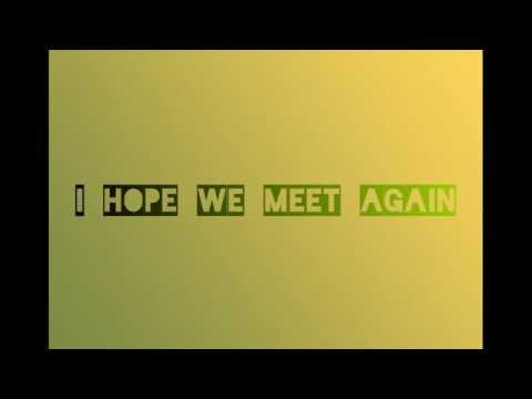 Hope we meet again - Pitbull Ft. Chris Brown - lyrics video