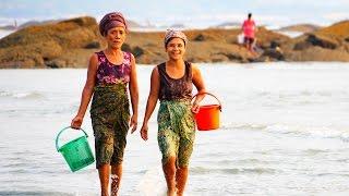 Dawei Myanmar  city photos : Myanmar, Dawei, Maungmagan beach,Beach of life..หาดทรายที่ทวาย มีหลายชีวิต
