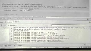 Hadoop Testing Workshop [Hebrew]