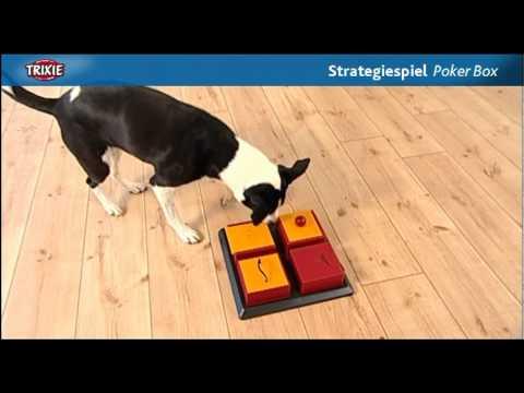 Dog Activity Poker Box Interaktives Hundespielzeug Strategiespiel Trixie