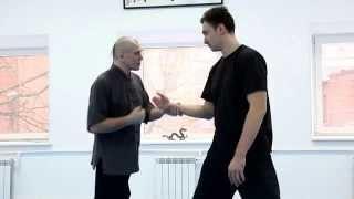 Видео с семинара Романа Романова по традиционному туйшоу. Стиль Чэнь. Три уровня далюй.
