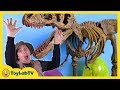 Jurassic World Dinosaur Toy & Easter Eggs Hunt Surprise Toys Opening of Dinos & T-Rex Kids Video