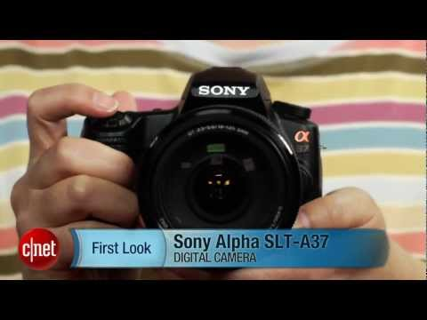 First Look: Sony Alpha SLT-A37: fast camera for frugal shooters