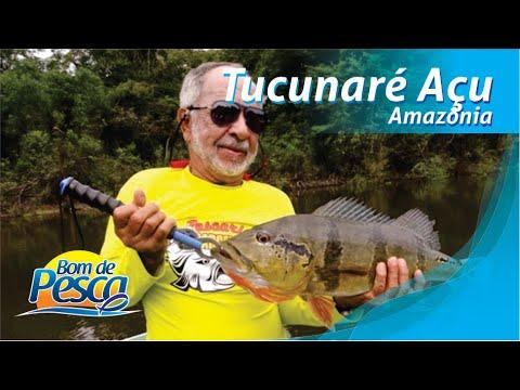 Programa Bom de Pesca, Rio Negro - Barcelos - Amazônia