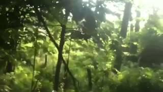 8. Kawasaki Mule 610 XC 4x4 Hill Climbing