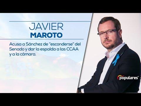 """Maroto acusa a Sánchez de """"esconderse"""" del Senado y dar la espalda a las CCAA y a la cámara."""