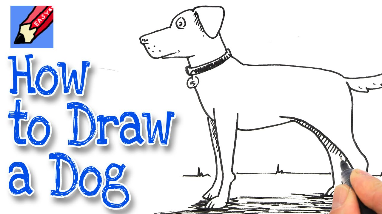 Step 1 Jack Russel Terrier Laying Down Coloring Page How To Draw A Dog Real  Easy