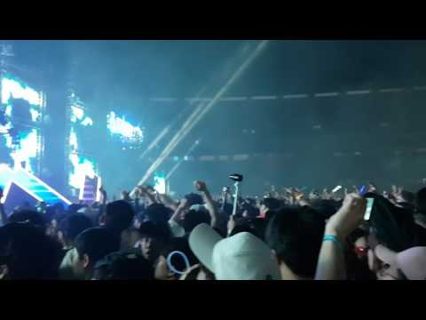 Alan walker live in Seoul, Korea (World DJ Festival)