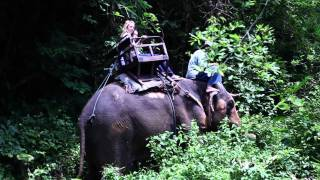Thailand Movie - Bold Thailand Travel Adventure