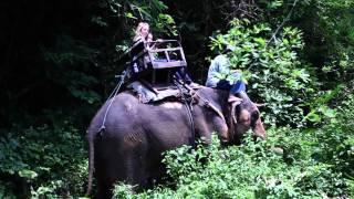 Thailand Movie - Bold Thailand Travel Adventure
