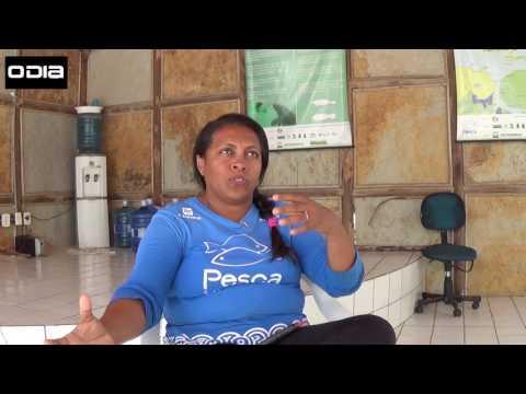 Projeto preserva o peixe-boi marinho no Piauí