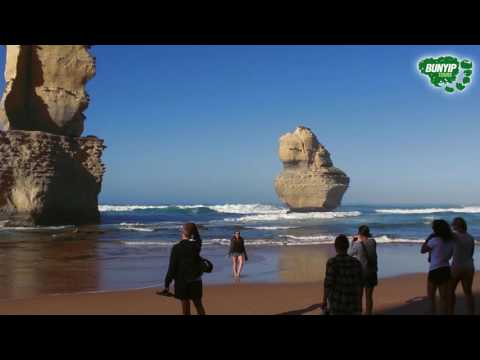 2-Day Great Ocean Road, Phillip Island and Mornington Peninsula Tour With Shared Dorm