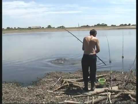 рыбалка в пирогово астраханская область