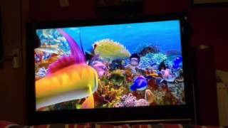 Nonton The Reef 2  High Tide With The  Startalk  In Stupid And Humans Or Aliens   Trailer  2013  Film Subtitle Indonesia Streaming Movie Download