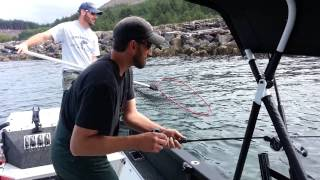Nehalem river Oregon coast Fall Chinook trip