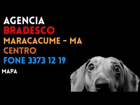 ✔ Agência BRADESCO em MARACACUME/MA CENTRO - Contato e endereço