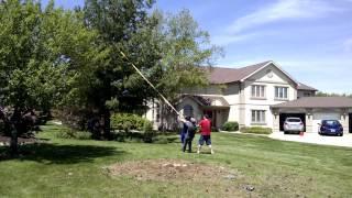 Big tree falling 5/21/15