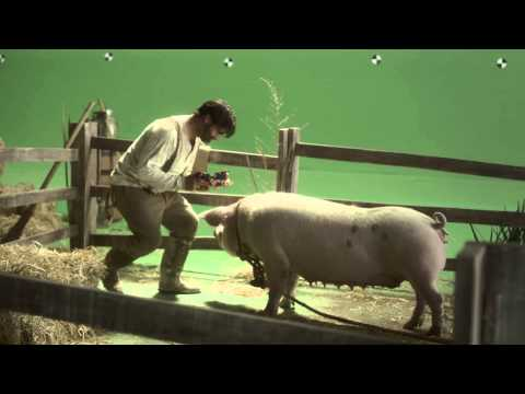 Lapiz tells the story of one man's love for his pig i
