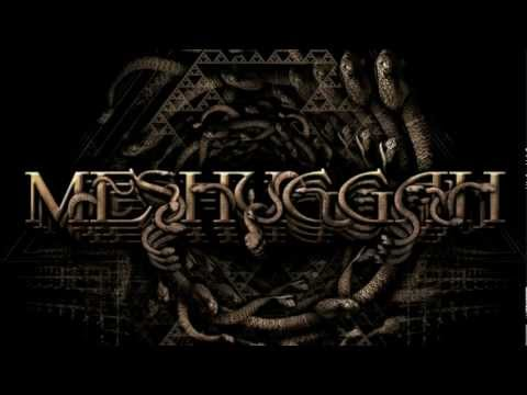 MESHUGGAH - Do Not Look Down (OFFICIAL LYRIC VIDEO)