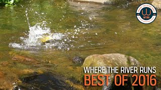 WTRR's Best of 2016 Video Series