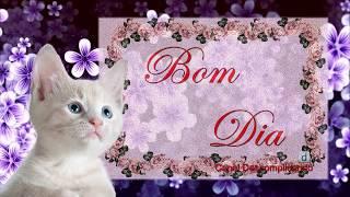 Mensagens para whatsapp - Linda mensagem de BOM DIA ABENÇOADO - BUSQUE SEUS SONHOS - para whatsapp, facebook
