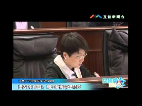 社會文化領域 第二組 黃潔貞 陳明金 ...