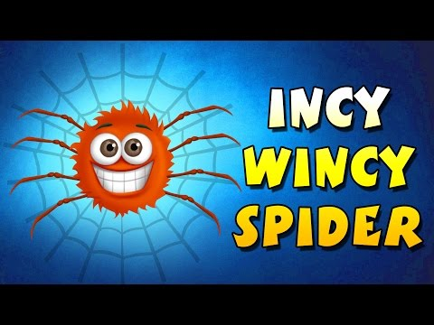 Incy Wincy Spider || 3D Animation || Nursery Rhyme Song