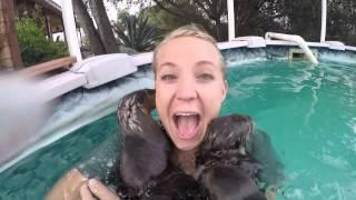 Elle se met dans une piscine avec des loutres cendrées