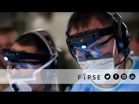 Nace la nueva FIPSE
