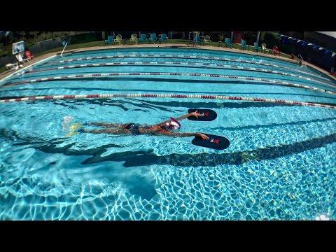 Wasserfassen beim Delphinschwimmen