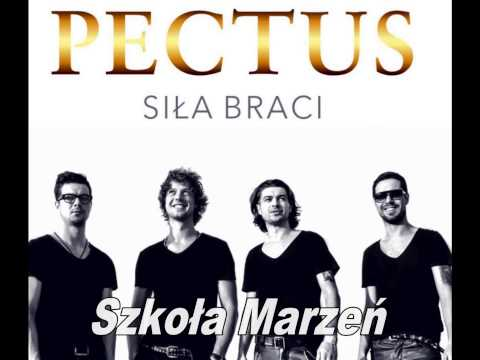 Pectus - Szkoła marzeń tekst piosenki