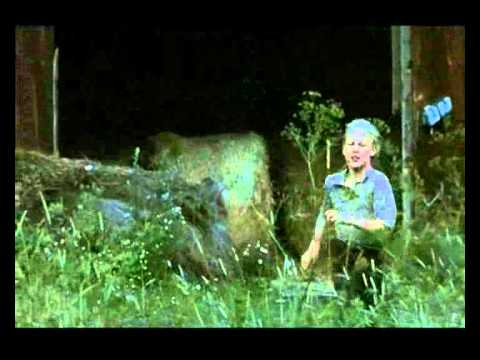 Kalle Blomkvist - De hjältemodiga (видео)