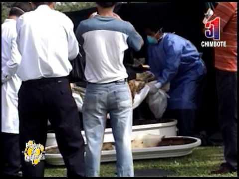 Canal31 - Exhuman cadáver de niña Tamara Soto