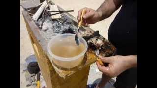 Part 2 جزیره کیش خوردن طوطیای دریایی بسیار لذیذ