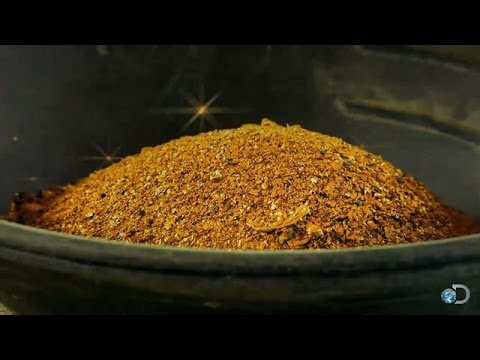 Gold Big or Go Home | Gold Rush 31 October 2014 10 PM
